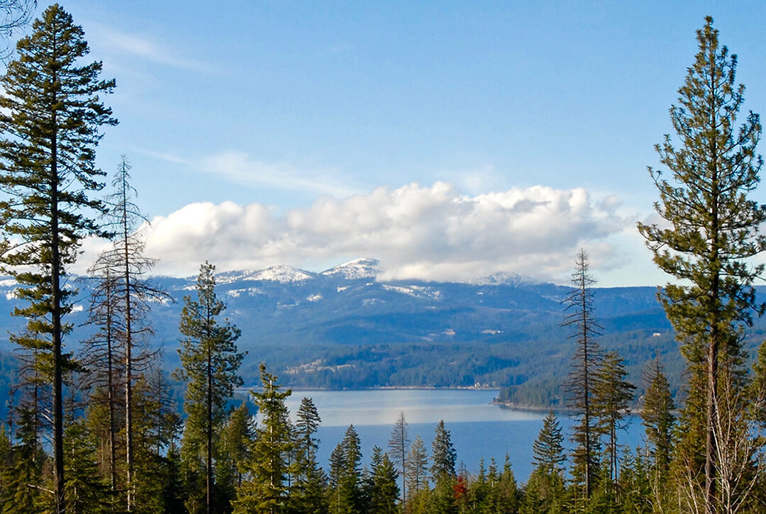 lot 28 | The Preserve at Gotham Bay | Coeur d'Alene, Idaho