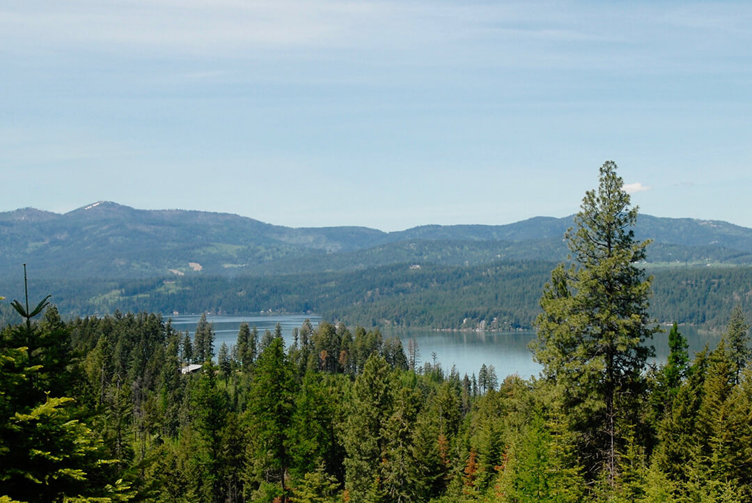 lot 31 | The Preserve at Gotham Bay | Coeur d'Alene, Idaho