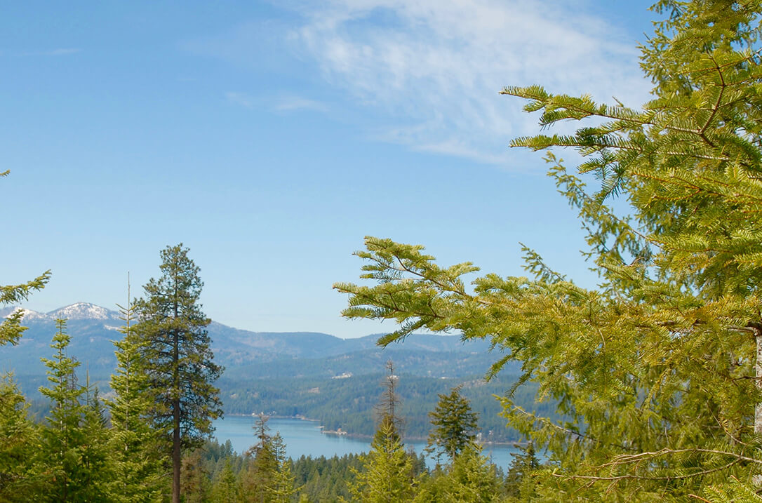 lot 38 view | The Preserve at Gotham Bay | Coeur d'Alene, Idaho