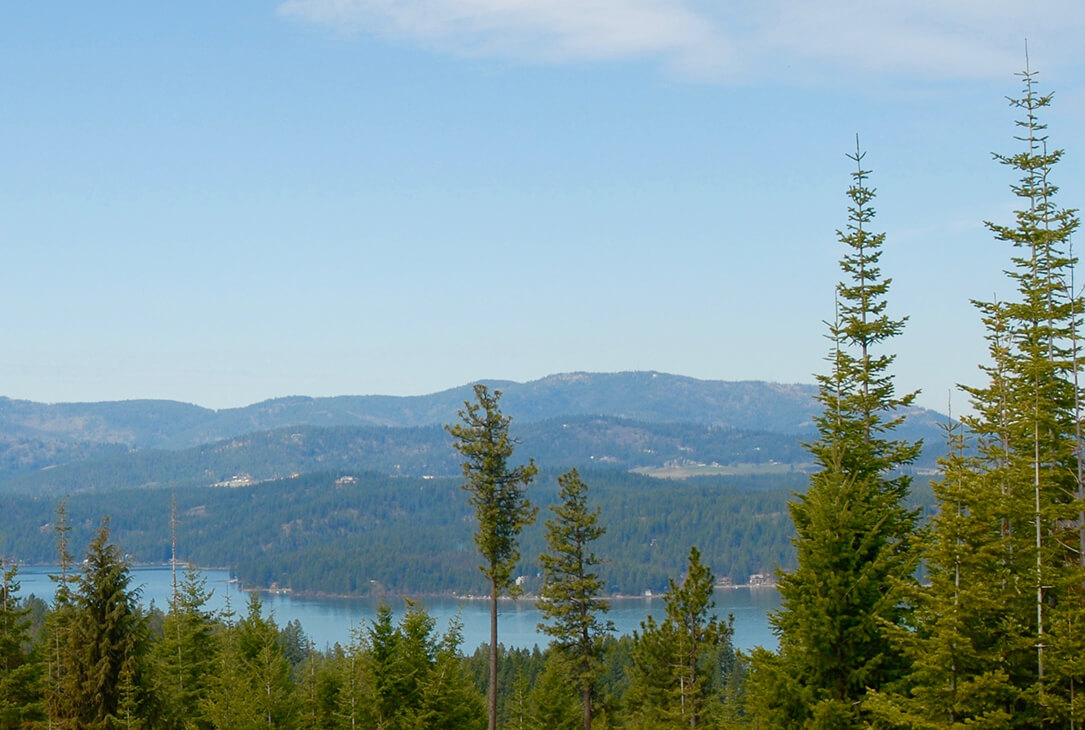 lot 40 view | The Preserve at Gotham Bay | Coeur d'Alene, Idaho