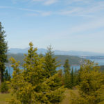 Lot 43 | The Preserve at Gotham Bay | Coeur d'Alene, Idaho