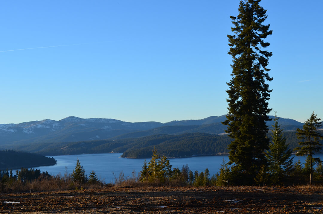 Lot 48 | The Preserve at Gotham Bay | Coeur d'Alene, Idaho