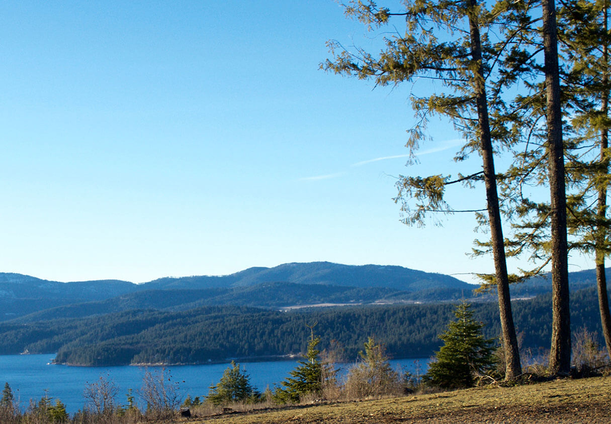 Lot 50 | The Preserve at Gotham Bay | Coeur d'Alene, Idaho
